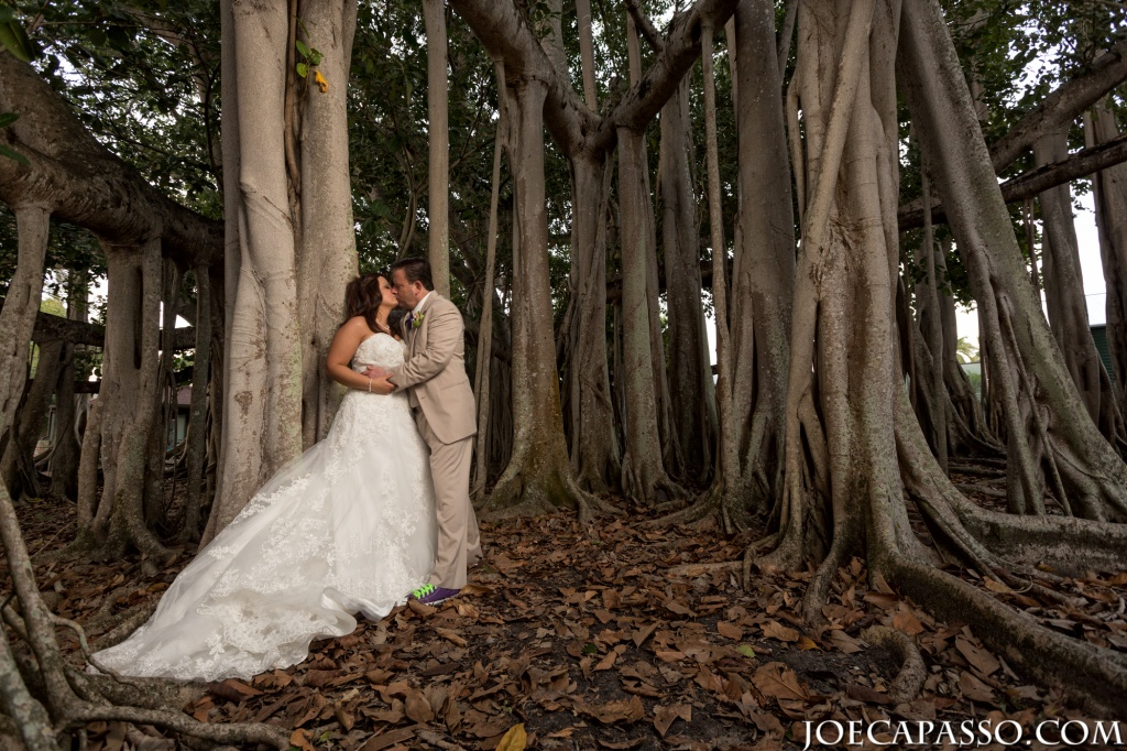 banyan tree wedding