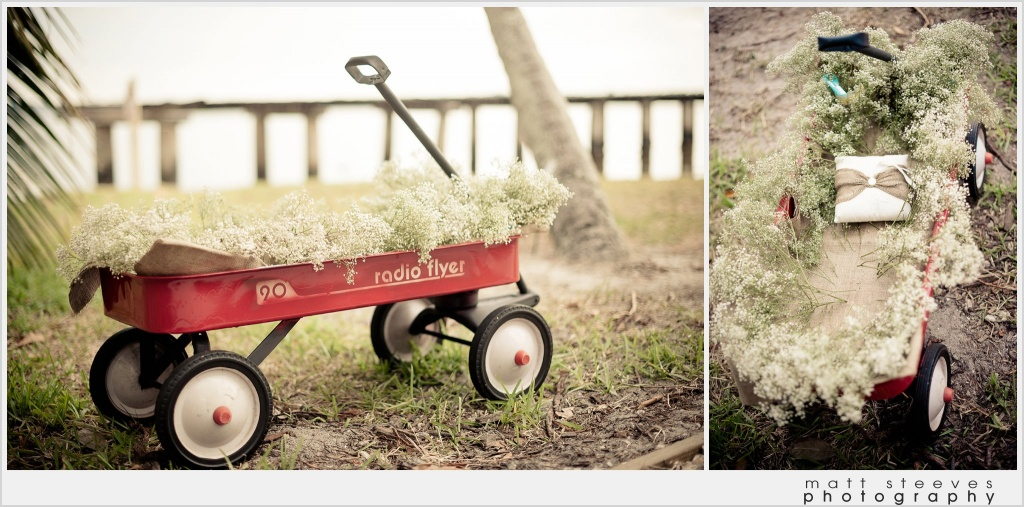 home weddings ring bearer wagon