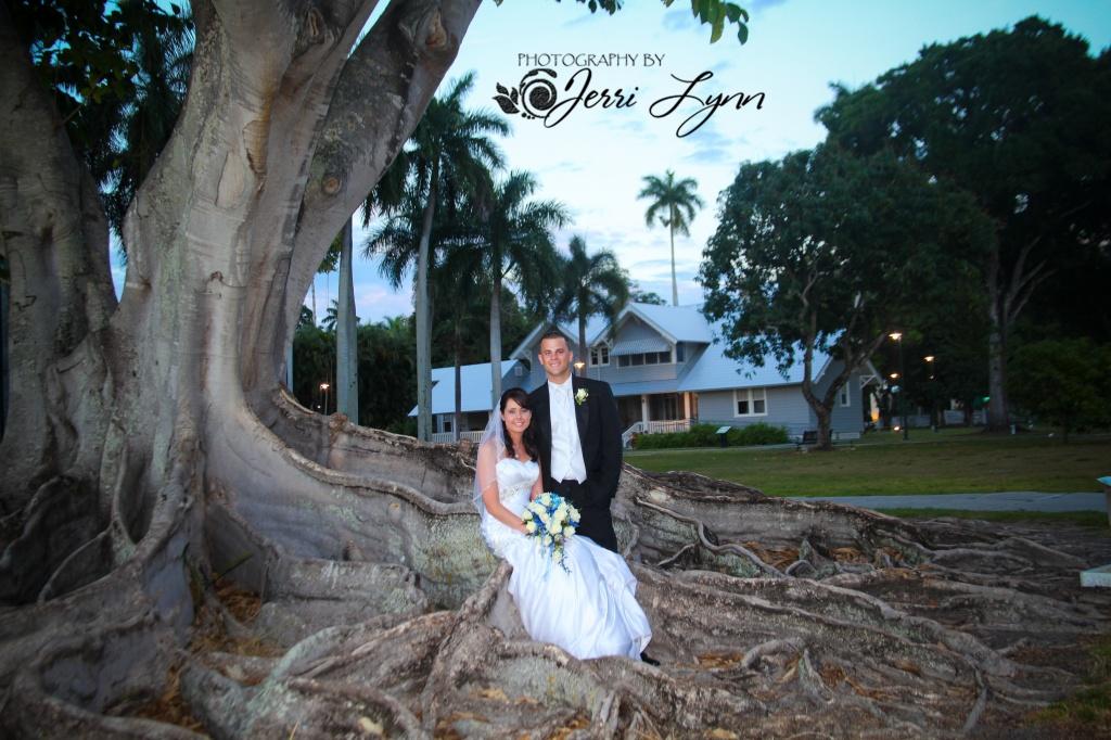 big tree wedding