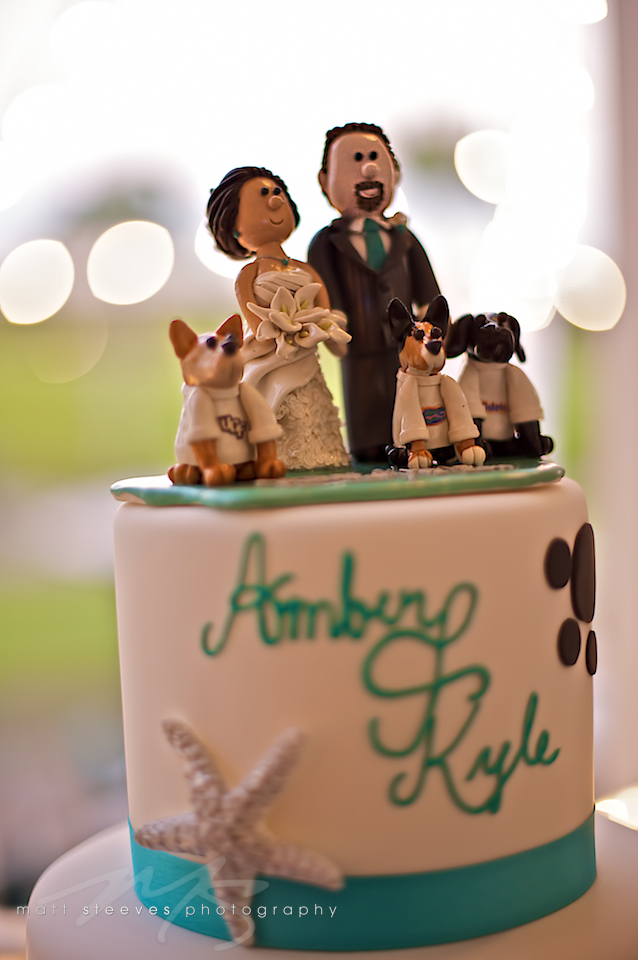 amber & kyle cake matt steeves