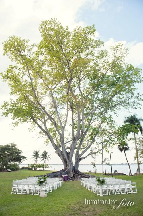 big tree wedding mysore fig edison ford fort myers venues