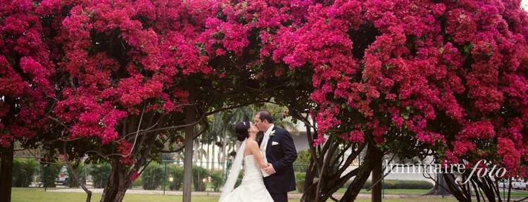 bright flowers wedding photo bougainvillea florida venues