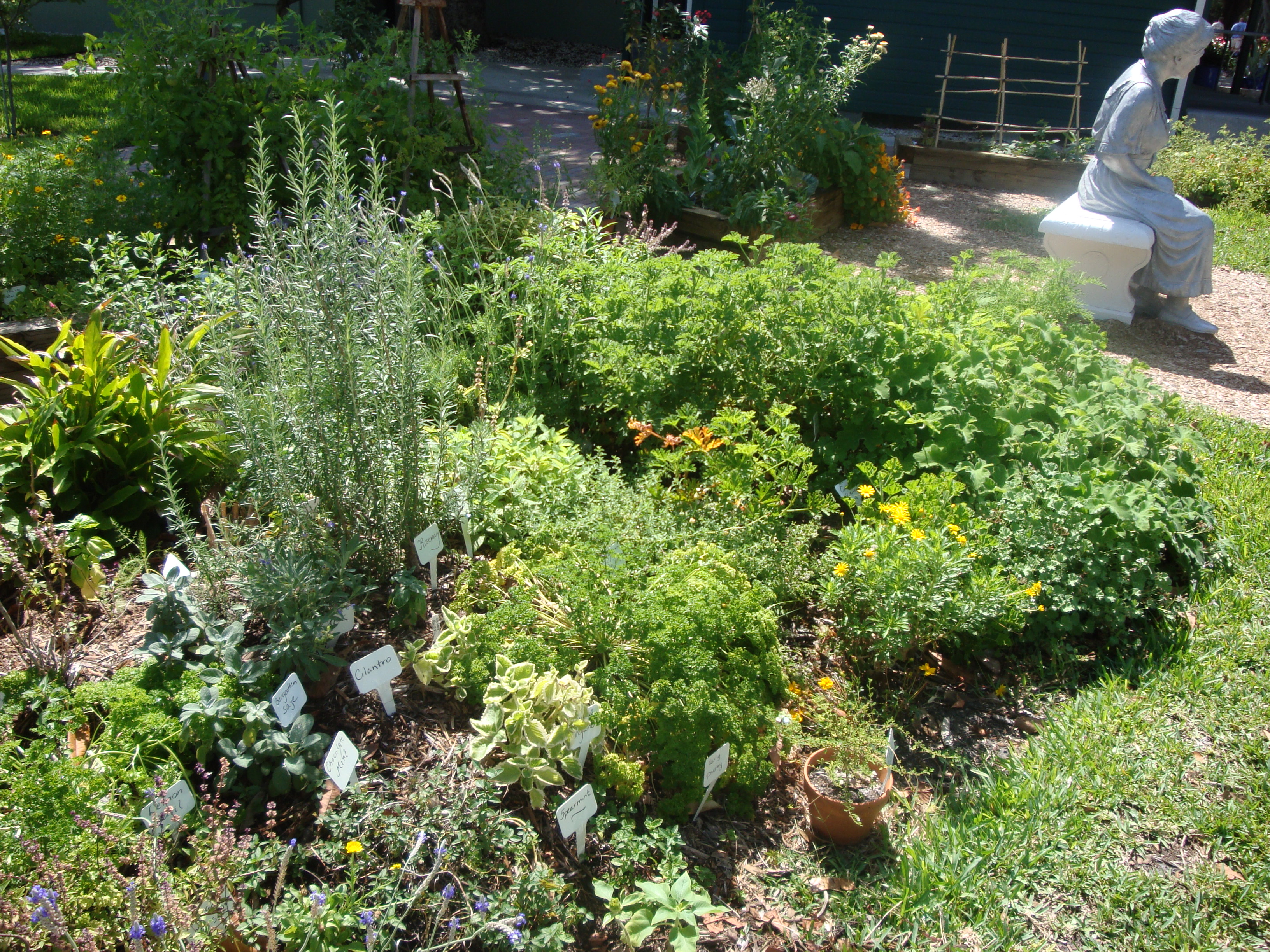 Charmant How To Make Your Own Herb Mound