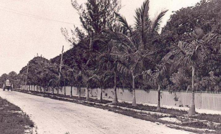 edison coconut grove mcgregor
