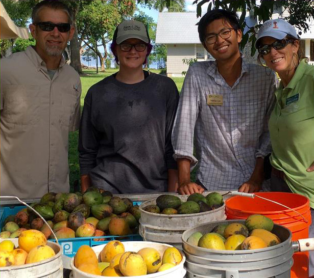 group with debbie and mangoes in buckets